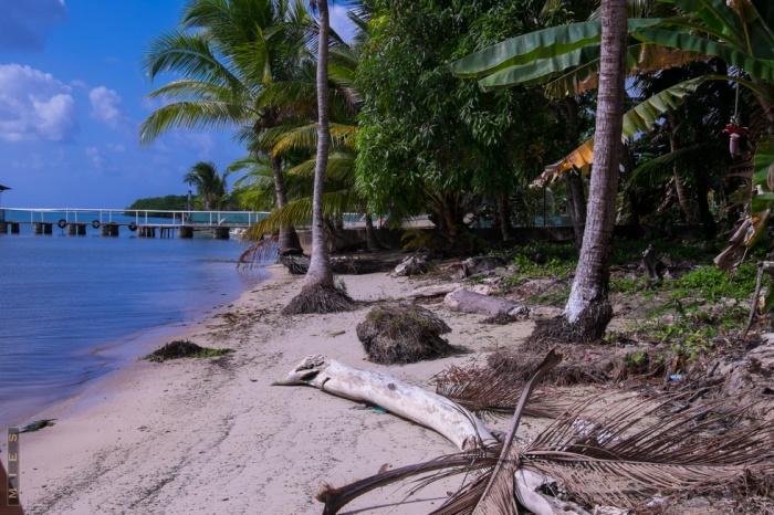 Travel, Adventure, Hiking, Menschen, Panama, Caminorealpanama, Portobelo,